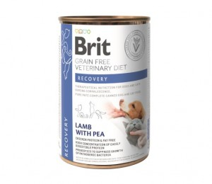 Brit GF Veterinary Diets Dog&Cat CAN Recovery