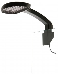 Lampka LED Day & Night, M (EX-3362)